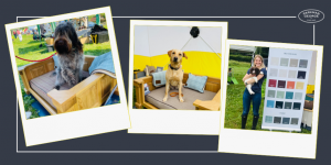 Dogs sat in dog beds and blond lady holding a dog in front of a colour chart